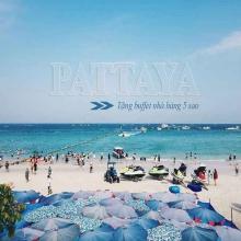 Tour Pattaya BangKok 5 ngày Vinared tour