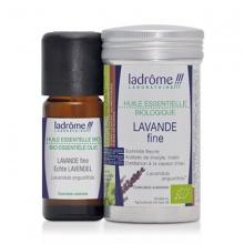 Tinh dầu organic Oải Hương - Lavender Fine
