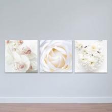 """Bộ 3 tranh trang trí thiên nhiên """"Hoa dịu dàng"""" - tranh treo tường hoa lá W3412"""