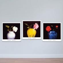 """Bộ 3 tranh tĩnh vật """"Hoa hồng huyền bí"""" - tranh treo tường hoa lá W3415"""