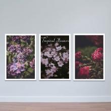 """Bộ 3 tranh trang trí """"Hoa tím huyền bí"""" - tranh treo tường hoa lá W3421"""