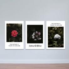 Bộ 3 tranh trang trí chủ đề các loài hoa - tranh treo tường hoa lá W3424