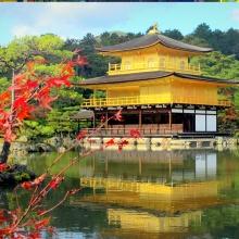Tour Nhật Bản: Osaka - Kobe - Kyoto