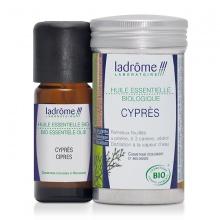 Tinh dầu Organic Cypress 10ml