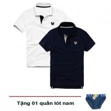 Áo thun nam cổ bẻ vải cá sấu cao cấp, combo 2 áo logo thêu rất sắc xảo (trắng, xanh đen, tặng 1 quần lót nam)