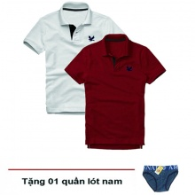 Áo thun nam cổ bẻ vải cá sấu cao cấp, combo 2 áo logo thêu rất sắc xảo (trắng, đỏ đô, tặng 1 quần lót nam)