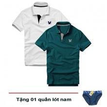 Áo thun nam cổ bẻ cá sấu cao cấp, combo 2 áo logo thêu sắc xảo (trắng, xanh cổ vịt, tặng 1 quần lót)