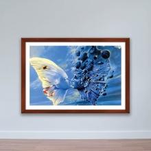 """Tranh trang trí """"Đôi bướm"""" tranh treo tường W4068"""