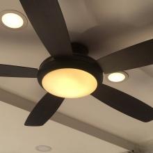Quạt trần đèn 131019 - có điều khiển - cánh gỗ 1m32