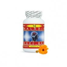 Dược thảo toàn chân chai số 12 hỗ trợ điều trị đau nhức đầu do viêm xoang mũi