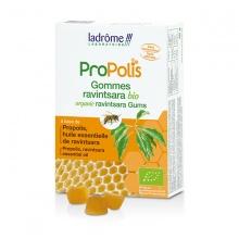 Kẹo ngậm hữu cơ keo ong và tinh dầu Ravintsara