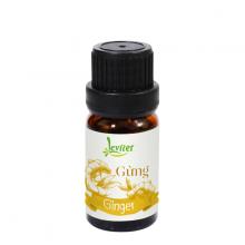 Tinh dầu gừng Leviter 10ml