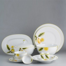 Bộ đồ ăn Âu - Á 46 sản phẩm - Camellia - quả chanh