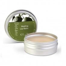 Son dưỡng môi Olive Botani Healing Lip Balm (10g)