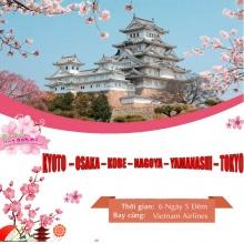 Tour 6N5Đ - VN 31.3 - Sakura