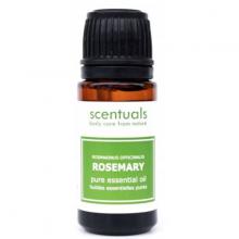 Tinh dầu nguyên chất hương Thảo Rosemary 10ml Scentuals