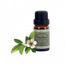 Tinh dầu nhựa copaiba - Copaiba Balsam Essential Oil 5ml - Hoa Thơm Cỏ Lạ