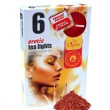 Hộp 6 nến thơm tinh dầu Tealight Admit Erotic QT026103 - gỗ đàn hương