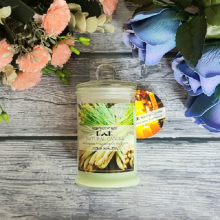 Nến thơm đuổi muỗi ECOLIFE - Candles Lemongrass Jar