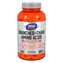 Branched Chain Amino Acids Hỗ trợ khôi Phục và Tái Tạo Tế Bào Cơ Hỗ Trợ Luyện Tập 240 Viên