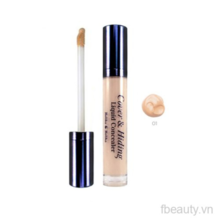 Che khuyết điểm Holika Holika Cover and Hiding Liquid Concealer 01