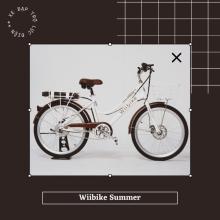 Xe đạp trợ lực điện Wiibike Summer - Trắng - Size 24