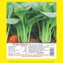Hạt giống cải ngọt tuyển NP 04 100GR