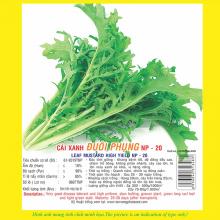 Hạt giống cải xanh đuôi phụng NP 20 10GR