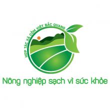 Cốm Việt Bắc Quang
