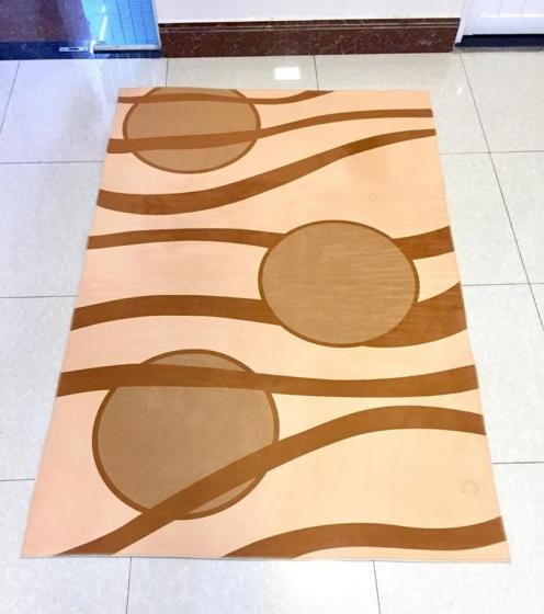 Thảm nhung 3D họa tiết nâu tròn Binbin TSN20