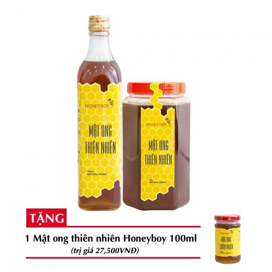 Combo mật ong thiên nhiên Honeyboy 500ml + Mật ong thiên nhiên Honeyboy 1kg + Tặng mật ong thiên nhiên Honeyboy 100ml