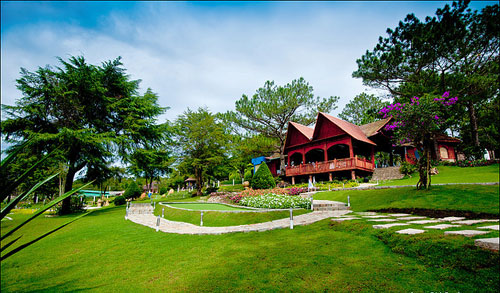 Tour Đà Lạt Ngàn Hoa Khoe Sắc 3 ngày 2 đêm Tết - Du Lịch Phong Cách Việt