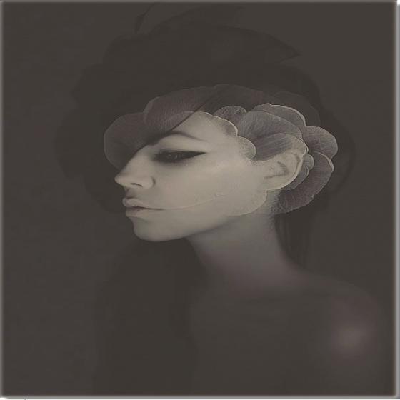Tranh in nghệ thuật canvas (73) - Thế giới tranh đẹp