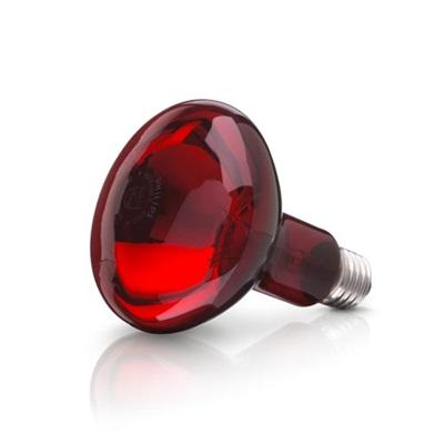Bóng đèn hồng ngoại 100W