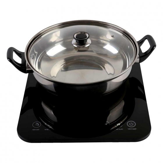 Bếp từ Bluestone ICB-6628