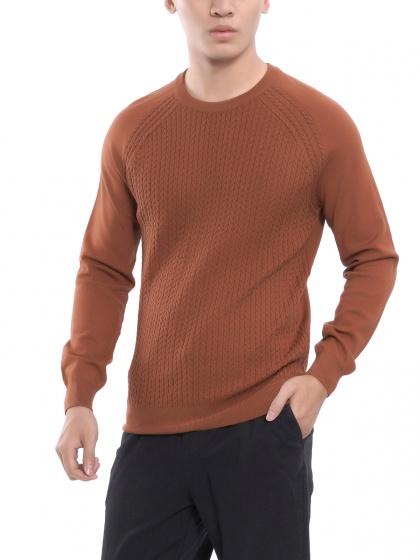 Áo len dài tay nam Aristino AWO004W7 màu nâu