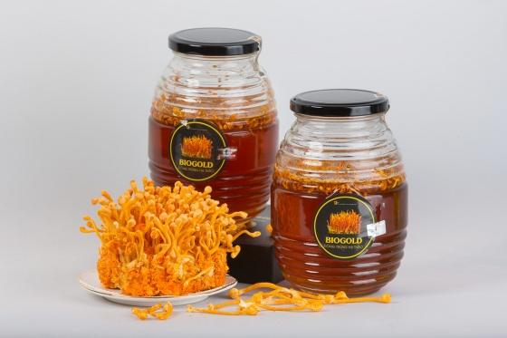 Đông trùng hạ thảo ngâm mật ong 500ml Gold Health
