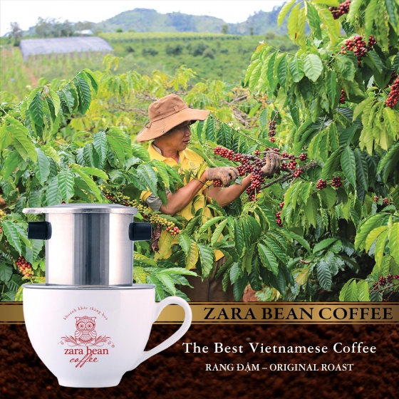 Cà phê pha phin Robusta truyền thống túi 250g