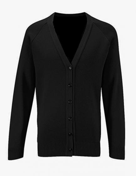 Áo len thời trang nam - 675