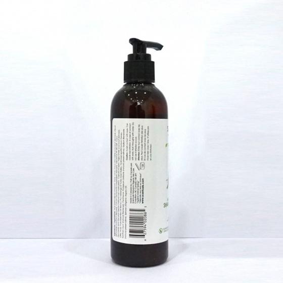 Dầu gội hương thảo - bạc hà Rosemary Mint shampoo