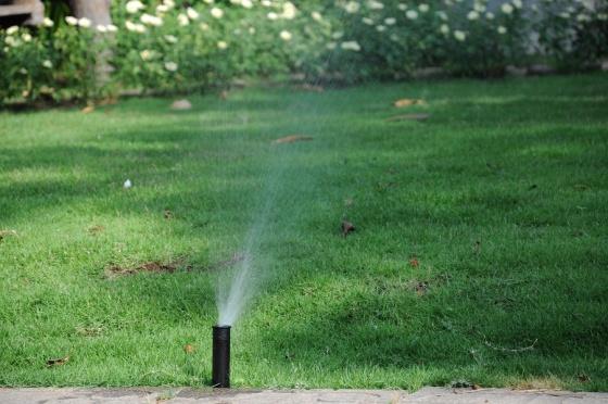 Vòi phun dạng tia / Gear drive sprinkler