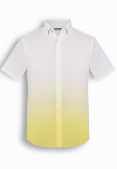 Bộ 2 áo sơ mi tay ngắn họa tiết Hàn quốc The Shirt Studio TD3
