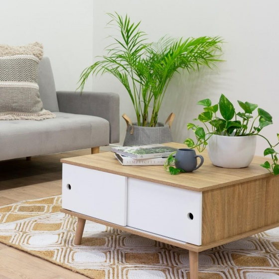 Bàn trà / sofa Blake gỗ tự nhiên  - Cozino