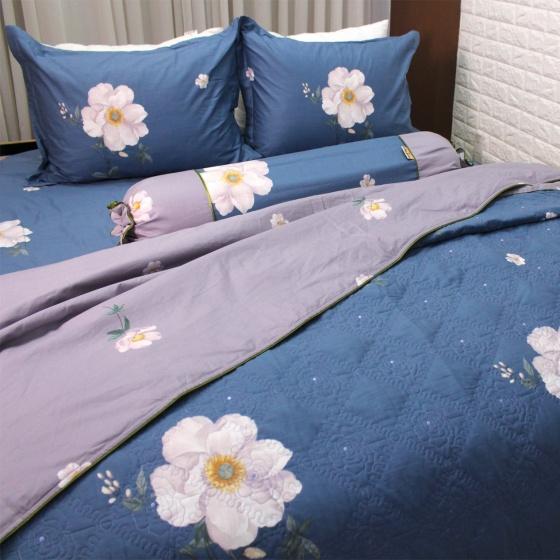 Bộ vỏ chăn ga gối 5 món cotton satin Hàn Julia 405BM18