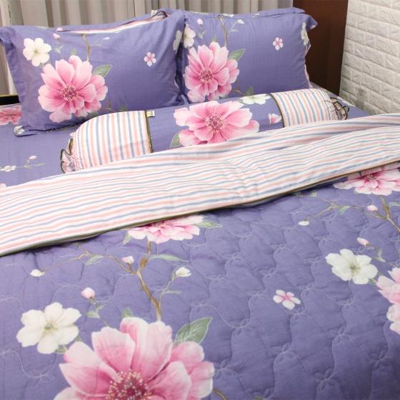 Bộ vỏ chăn ga gối 5 món cotton Hàn Julia 264BM18