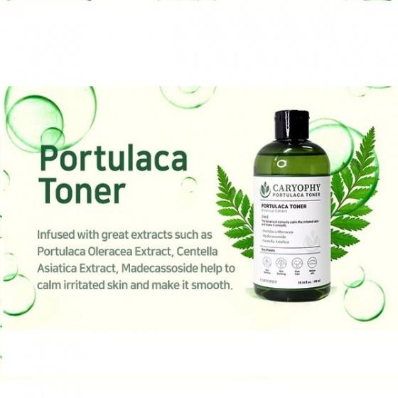 Combo toner + sữa rửa mặt trị mụn thâm từ rau má Caryophy Portulaca 450m