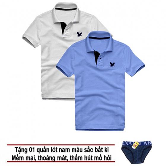 Áo thun nam cổ bẻ vải cá sấu cao cấp, combo 2 áo logo thêu rất sắc xảo (trắng, xanh môn, tặng 1 quần lót nam)