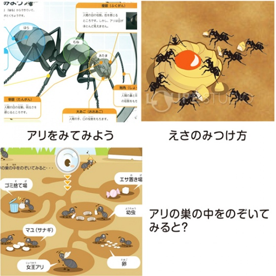 Bộ 2 hộp thuốc diệt kiến Super Arinosu Koroki Nhật Bản