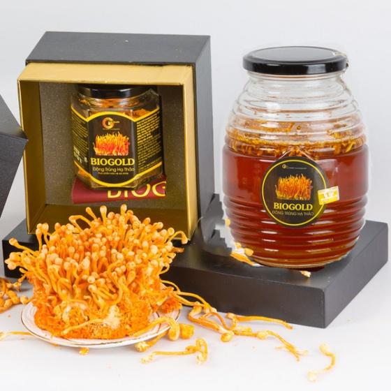 Mua 1 tặng 1 - trà đông trùng hạ thảo 5gr + mật ong đông trùng hạ thảo - Gold Health