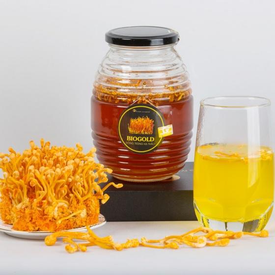 Mua 1 tặng 1 - đông trùng hạ thảo ngâm mật ong 500ml Gold Health